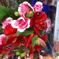 花屋さんの花/至福のひととき/スーパーマーケット/ライフ 1、2019年7月7日、トナリエの花屋さ…(9枚目)
