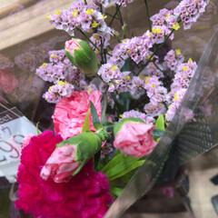 パシャリおでかけワンショット/スーパーマーケット/花屋さんの花/ライフ/おでかけワンショット 1、2019年8月2日、トナリエの花屋さ…(3枚目)