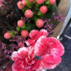 わたしのお盆/スーパーマーケット/花屋さんの花/ライフ 1、2019年8月18日、トナリエの花屋…(10枚目)