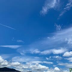 ブルー 仕事場〰 大きな蒼空にいつも元気もらって…