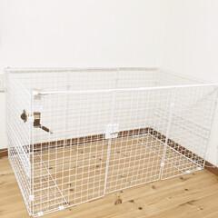 ワイヤーネット/犬/ペット/ペットサークル/ペットケージ/ケージDIY/... ダイソーのワイヤーネットで、犬用のケージ…