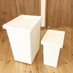 プチDIY/プチストレス/スッキリ/ビニール袋/ごみ箱/ゴミ箱/... ゴミ箱の外にはみ出してしまうビニール袋ス…