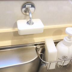ダルトン ソープホルダー マグネットソープホルダー Magnetic soap holder 石鹸台 石鹸置き ダルトン DULTON CH12-H463 固形石けん専用 | DULTON(せっけん)を使ったクチコミ「類似品を使っていたらマグネットが錆びてし…」(1枚目)