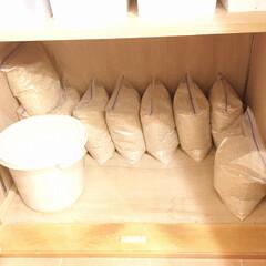 玄米/米袋/お米の収納/お米の保存/お米/フォロー大歓迎/... わが家は、新米の季節に農家さんからまとめ…
