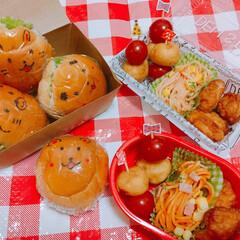 遠足弁当/ピクニック弁当/わたしのごはん/お弁当/LIMIAごはんクラブ/おでかけ 去年の遠足で作ったお弁当🍙✨ 行先は動物…