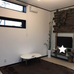 ストレリチア/ラブリコ棚DIY/ラブリコDIY/ウッドパネル/壁飾り/ウォールデコ/...