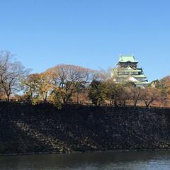 リミアの冬暮らし 大阪城 お天気に恵まれポカポカ陽気☀️ …