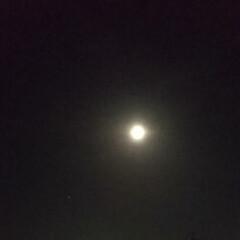 風景/令和元年フォト投稿キャンペーン 今日は満月🌕️(1枚目)