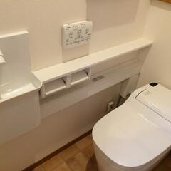 パナソニック/アラウーノ/ホワイト/トイレ アラウーノ。手洗い器はカウンタータイプ