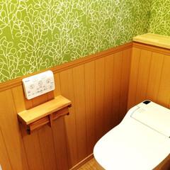 アラウーノ トイレです。森の中にいるみたい