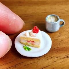 美味しいもの/靴下/ケーキ/手作り/fakesweets/カミニチュア/... 1/15 #いちごの日   皆さんは そ…