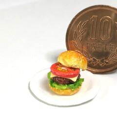 ミニチュアフード/ハンバーガー/バーガー/miniature/ミニチュア/Handmade/... ハンバーガーいい感じに出来た!(←自画自…(2枚目)