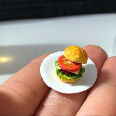 ミニチュアフード/ハンバーガー/バーガー/miniature/ミニチュア/Handmade/... ハンバーガーいい感じに出来た!(←自画自…(3枚目)