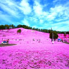おでかけワンショット/北海道/東藻琴村/芝桜公園 北海道 東藻琴村にある芝桜公園です✨❤ …