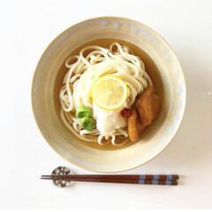 冷やし麺/盛り付け/和食器/和食/料理/グルメ/... 冷やしきつね  おろし入り