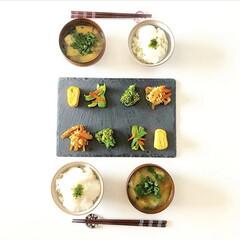 つくりおき/盛り付け/和食器/和食/料理/グルメ/... 作り置きと部活弁当の残りで朝ごはん。 普…