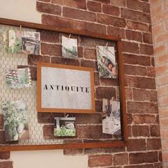 チキンネット/ボード/ポストカード/壁飾り/雑貨だいすき 木枠にチキンネットを貼り、好きなポストカ…