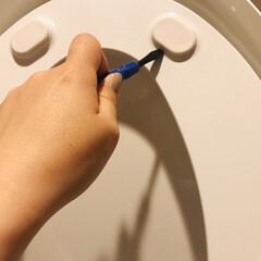 トイレ/こそうじ/生活の知恵/掃除/暮らし 便座裏のゴム?シリコン?笑 ここって拭い…