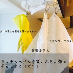 生活の知恵/家事/楽家事/キッチン/ふきん/ゴム手袋/... キッチンでよく使うふきん、ゴム手袋、食器…