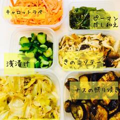生活の知恵/料理/作り置き/レシピ/にんじん/きゅうり/... ★作り置き★  作り置きは朝食、お弁当、…