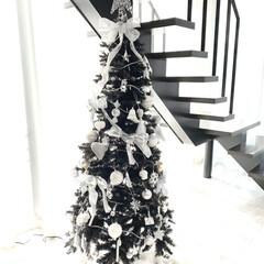 オーナメント/クリスマスオーナメント/Francfranc/クリスマスツリー/クリスマス/クリスマス2019 今年はFranc francのクリスマス…