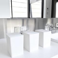 100均収納/100円ショップ/ダイソー収納/ダイソー購入品/DAISO/ダイソー/... ダイソーで購入した 洗剤収納ケース(フタ…