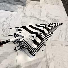 白黒/モノトーン好き/モノトーングッズ/モノトーン/ボーダー柄/ボーダー/... 息子の使っている 傘の布が少し薄くなって…