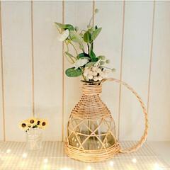 ナチュラル/花瓶/モモナチュラル/雑貨/インテリア/100均 先日、形に一目惚れした花瓶を見つけました…