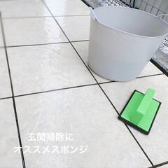 アズマ工業 外壁・玄関清掃スポンジ 洗剤不要 ブラッシングスポンジ/AZ655 | アズマ工業(その他洗剤)を使ったクチコミ「水だけで汚れがスッキリ落ちるので、 玄関…」