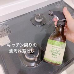 ジフ キッチン泡クリーナー ハーバル クレンジングアクア ミント&グリーンティー 本体ボトル 300ml 18個(食洗器用洗剤)を使ったクチコミ「コンロにはねた油をサッと落とせます。 ク…」