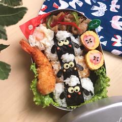お弁当/デコ弁/キャラ弁/幼稚園弁当 2018.7.24
