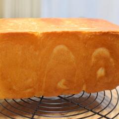 食パン/生食パン/至福のひととき/LIMIAスイーツ愛好会/LIMIAごはんクラブ/おうちごはんクラブ/... 自宅で生食パン🍞 ふわふわで焼かなくても…