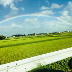 虹/雨季ウキフォト投稿キャンペーン/はじめてフォト投稿 いつかの虹。印象に残るくらいどでかかった。