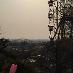 夕焼け景色/フォロー大歓迎/風景/みんなにおすすめ/遊園地/シルエットポイ ほぼシルエットの遊園地!(1枚目)