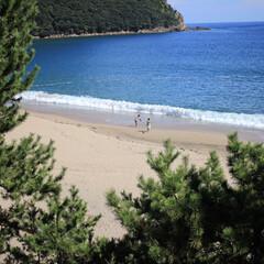 夏休み/佐津海岸/旅行/自然/海/おでかけワンショット 友人と旅行に行った際、海辺を散策散策する…