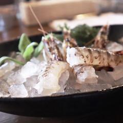 わたしのごはん 沖縄で食べた車海老!