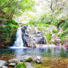 川/水/水辺/山の中/自然/大自然/... 川のど真ん中まで行って撮りました。緑に囲…