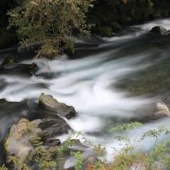 シャッタースピード遅め/一眼レフカメラ/一眼レフカメラ研究中/一眼レフ好きな人と繋がりたい/一眼レフのある暮らし/一眼レフのある生活 シャッター速度を落として撮る水の流れも好…