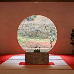 北鎌倉/丸窓/悟りの窓/明月院/鎌倉/写真好きと繋がりたい/... 横浜にいる時は鎌倉もよく行きました💨 お…