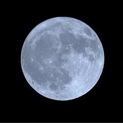 6dmk2/6dmark2/eos/Canon/moon/フルムーン/... 昨日は満月でしたね🌕とっても綺麗でした♪…