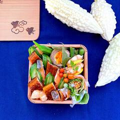 おうちごはん/お弁当/ランチ 『#今日のお弁当』 • • 🔸ちらし寿司…(1枚目)