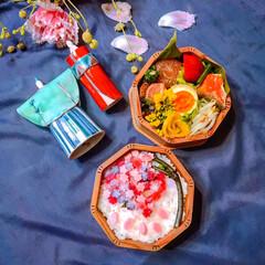ひな祭り/ピンク/お弁当 ꙳✧˖°⌖꙳✧˖°⌖꙳✧˖°⌖꙳✧˖°⌖…