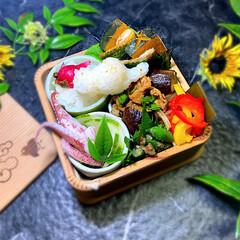 ランチボックス/お弁当/ランチ/お弁当箱/おしゃれ弁当箱 ♡ ♡  ᎶᎧᎧᎴ ᎷᎧᏒᏁᎥᏁᎶ  朝…(1枚目)