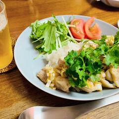イッタラ ティーマ プレート21cm パールグレイ iittala Teema | イッタラ(皿)を使ったクチコミ「昨日の晩ご飯は、カオマンガイでした。 炊…」