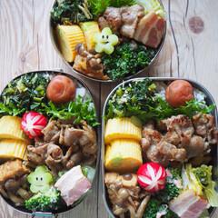 ステンレス弁当箱/工房アイザワ/生姜焼き/LIMIAごはんクラブ/はじめてフォト/料理/... 豚の生姜焼きべんとう  豚肉を塩麹とすり…(3枚目)