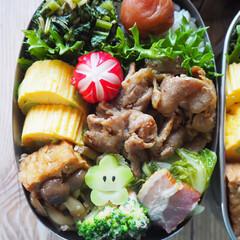 ステンレス弁当箱/工房アイザワ/生姜焼き/LIMIAごはんクラブ/はじめてフォト/料理/... 豚の生姜焼きべんとう  豚肉を塩麹とすり…(2枚目)