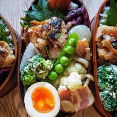 和弁/曲げわっぱ弁当/曲げわっぱ/お弁当/はじめてフォト投稿/LIMIAごはんクラブ もち麦と16穀米のごはん弁当  と、言っ…
