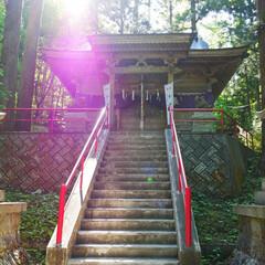 おでかけワンショット/令和元年フォト投稿キャンペーン/わたしのお気に入り/岩手県/神社 八幡平にて📷 不動の滝の近くにある、桜松…