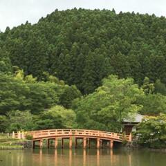 令和元年フォト投稿キャンペーン/朱色/橋/国宝/白水阿弥陀堂/自然 水面に映る朱色の橋。どのくらい見つめてい…