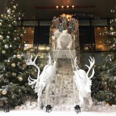 クリスマス/オブジェ/ハイセンス/令和元年フォト投稿キャンペーン 街で見かけたお洒落なオブジェ。Merry…